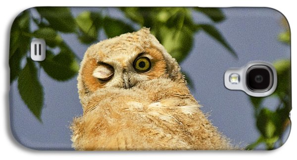 Fort Collins Galaxy S4 Cases - Owlet Galaxy S4 Case by Bonnie Bowne