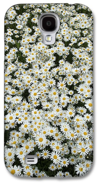 Midsummer Galaxy S4 Cases - Oxeye Daises Galaxy S4 Case by Tim Gainey