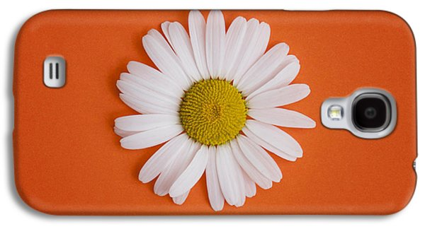 Midsummer Galaxy S4 Cases - Oxeye Daisy Square Orange Galaxy S4 Case by Tim Gainey