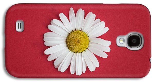 Midsummer Galaxy S4 Cases - Oxeye Daisy Square Red Galaxy S4 Case by Tim Gainey