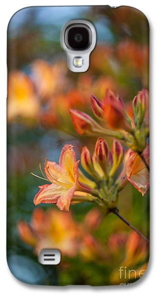 Rhododendron Galaxy S4 Cases - Painterly Rhodies Galaxy S4 Case by Mike Reid