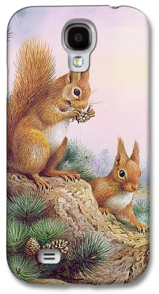 Pine Cones Photographs Galaxy S4 Cases - Pair Of Red Squirrels On A Scottish Pine Galaxy S4 Case by Carl Donner