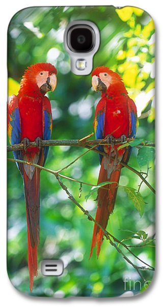 Pair Of Scarlet Macaws Galaxy S4 Case by Art Wolfe