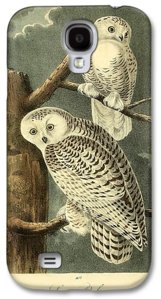 Business Drawings Galaxy S4 Cases - Pair of Snowy Owls Galaxy S4 Case by John James Audubon