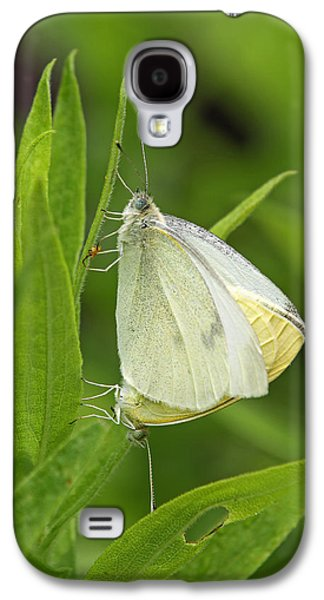 Pairings Galaxy S4 Cases - Pairing White Cabbage Butterflies Galaxy S4 Case by Juergen Roth
