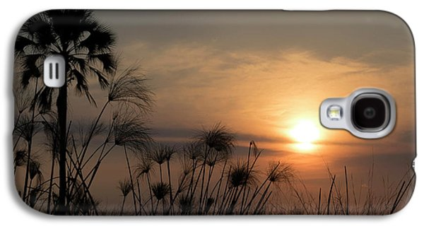 Palm Tree And Papyrus Plants At Dusk Galaxy S4 Case by Panoramic Images