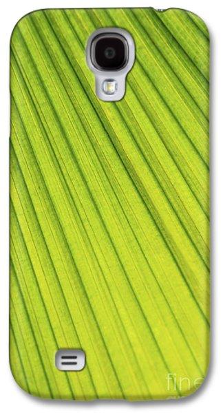 Diagonal Galaxy S4 Cases - Palm tree leaf abstract Galaxy S4 Case by Elena Elisseeva