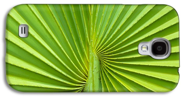 Diagonal Galaxy S4 Cases - Palm tree leaf background Galaxy S4 Case by Aged Pixel