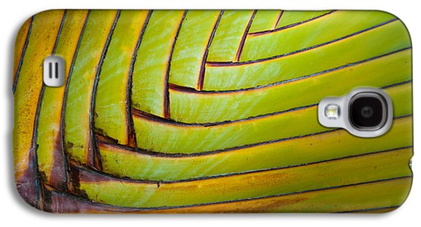 Texture Photographs Galaxy S4 Cases - Palm Tree Leafs Galaxy S4 Case by Sebastian Musial