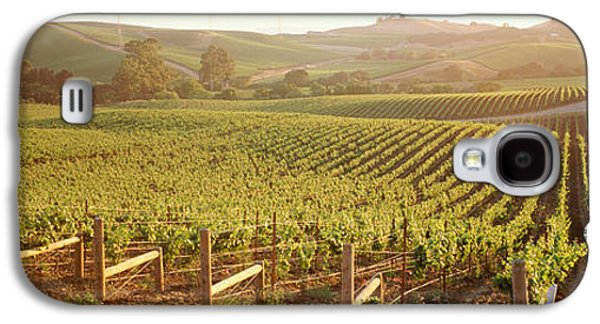 Vineyard In Napa Galaxy S4 Cases - Panoramic View Of Vineyards, Carneros Galaxy S4 Case by Panoramic Images