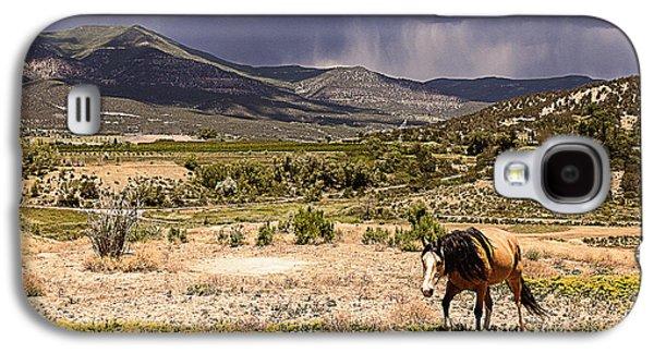 Original Photographs Galaxy S4 Cases - Paonia Colorado Country Galaxy S4 Case by Janice Rae Pariza
