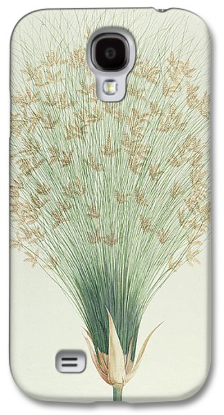 Papyrus Galaxy S4 Cases - Papyrus Galaxy S4 Case by James Bruce