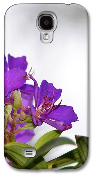 Business Galaxy S4 Cases - Paradise Found - Floral Photography By Sharon Cummings Galaxy S4 Case by Sharon Cummings