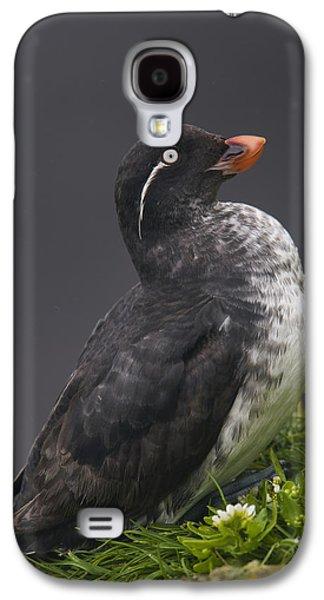 Parakeet Auklet Sitting In Green Galaxy S4 Case by Milo Burcham