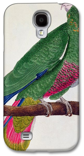 Feather Drawings Galaxy S4 Cases - Parrot Galaxy S4 Case by Francois Nicolas Martinet