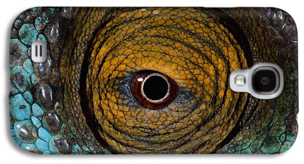 Chameleon Galaxy S4 Cases - Parsons Chameleon Eye Galaxy S4 Case by Martin Harvey