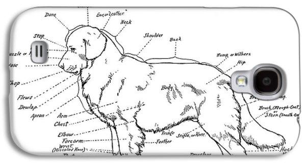Dogs Digital Art Galaxy S4 Cases - PARTS of a DOG 2 -- 1919 Galaxy S4 Case by Daniel Hagerman