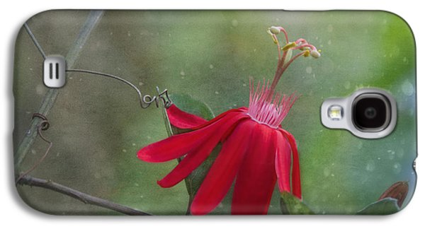 Passiflora Flower Galaxy S4 Case by Kim Hojnacki