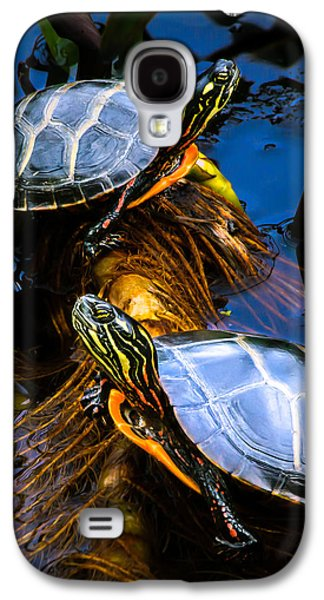 Inspirational Photographs Galaxy S4 Cases - Passing the day with a friend Galaxy S4 Case by Bob Orsillo