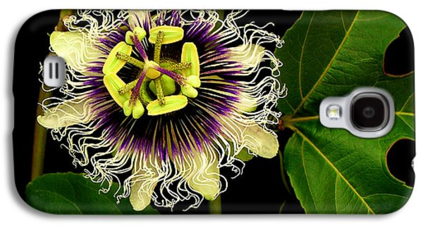 Passion Flower Galaxy S4 Case by James Temple