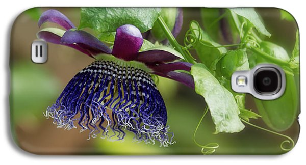 Passion Flower - Ruby Glow Galaxy S4 Case by Kim Hojnacki