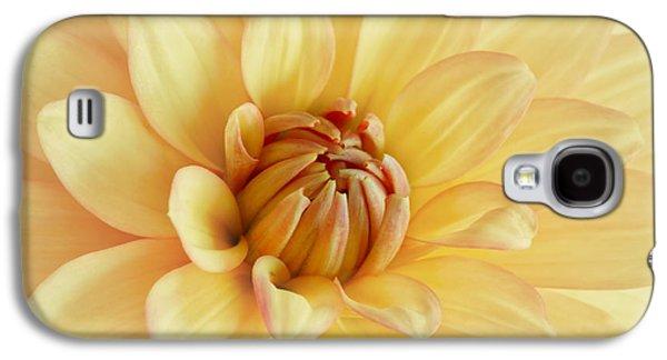 Concept Photographs Galaxy S4 Cases - Pastel Dahlia Galaxy S4 Case by Kim Hojnacki