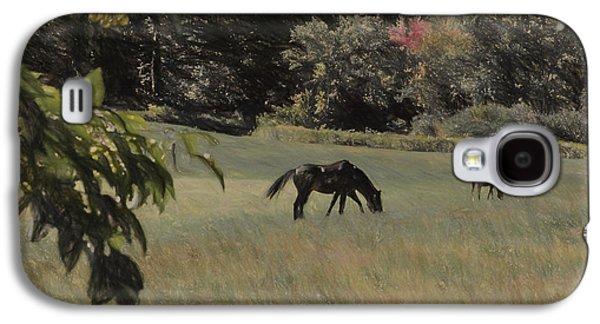 Sudbury Ma Galaxy S4 Cases - Pastoral Galaxy S4 Case by Lee Fortier