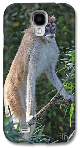 Preditor Galaxy S4 Cases - Patas Monkey on High Alert Galaxy S4 Case by Jim Fitzpatrick