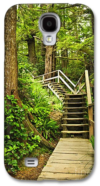 Wooden Stairs Galaxy S4 Cases - Path in temperate rainforest Galaxy S4 Case by Elena Elisseeva