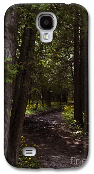 Base Path Galaxy S4 Cases - Path in the Dark Woods Galaxy S4 Case by Margie Hurwich