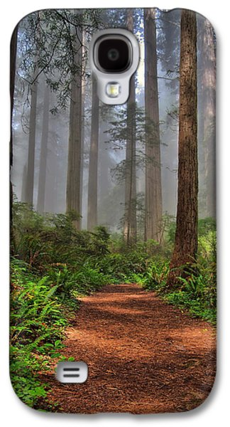 Michael Photographs Galaxy S4 Cases - Path Thru the Redwoods Galaxy S4 Case by Michael  Ayers