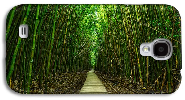 Trees Photographs Galaxy S4 Cases - Path to Zen Galaxy S4 Case by Jamie Pham
