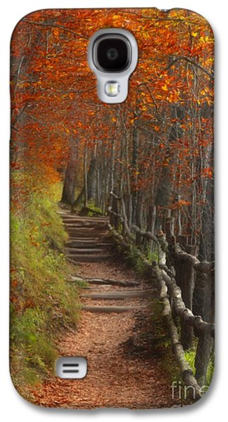 Split Rail Fence Galaxy S4 Cases - Pathway to Autumn Galaxy S4 Case by Benanne Stiens