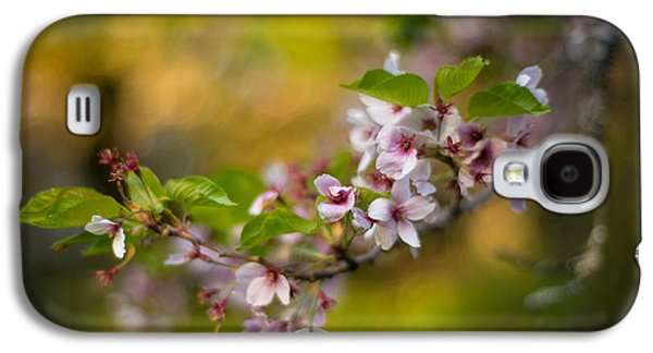 Rhododendron Galaxy S4 Cases - Peaceful Cherry Light Galaxy S4 Case by Mike Reid