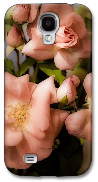 Floribunda Galaxy S4 Cases - Peach Floribunda Roses Galaxy S4 Case by Julie Palencia