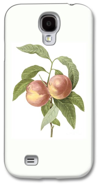 Peaches Drawings Galaxy S4 Cases - Peach Galaxy S4 Case by Spencer McKain