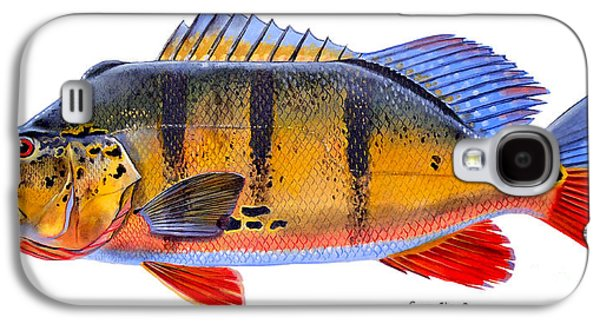Walleye Galaxy S4 Cases - Peacock Bass Galaxy S4 Case by Carey Chen