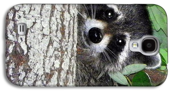 Raccoon Digital Art Galaxy S4 Cases - Peek A Boo Raccoon Galaxy S4 Case by Sheri McLeroy