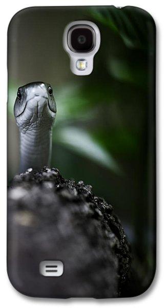 Black Mamba Galaxy S4 Cases - Peek-a-boo Galaxy S4 Case by Rick Budai