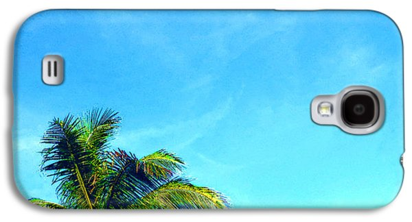 Puerto Rico Galaxy S4 Cases - Peekaboo Palm - Tropical Art By Sharon Cummings Galaxy S4 Case by Sharon Cummings