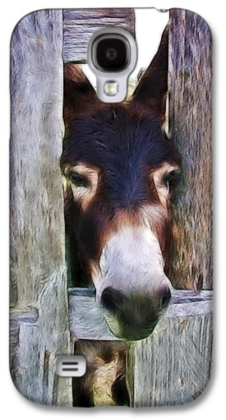 Barn Pen And Ink Galaxy S4 Cases - Peeking Thru The Fence Galaxy S4 Case by Athena Mckinzie