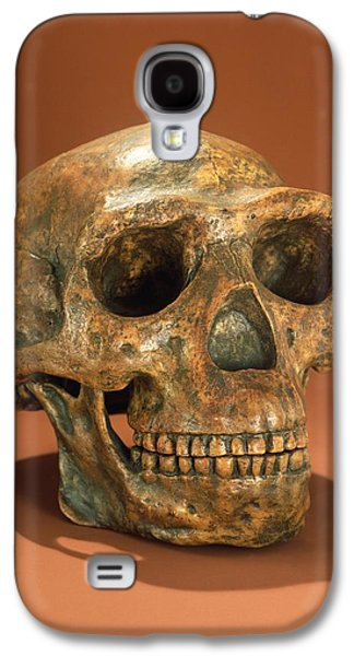 Teeth Galaxy S4 Cases - Peking Mans Reconstructed Skull, Cave Choukoutien Bone Galaxy S4 Case by Chinese School