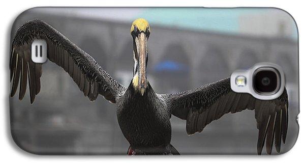 Cedar Key Galaxy S4 Cases - Pelican Coming in for A Landing Galaxy S4 Case by Claudette DeRossett