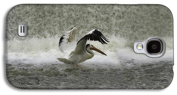 Appleton Photographs Galaxy S4 Cases - Pelican Landing in Color Galaxy S4 Case by Thomas Young