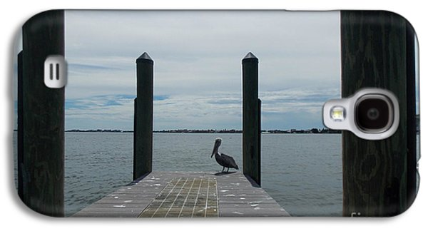 Waterscape Pyrography Galaxy S4 Cases - Pelican on the Dock Galaxy S4 Case by To-Tam Gerwe