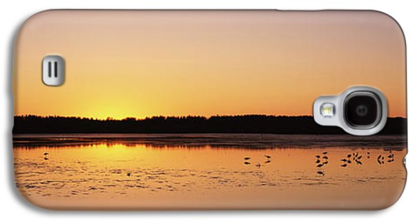 Wildlife Refuge. Galaxy S4 Cases - Pelicans And Other Wading Birds Galaxy S4 Case by Panoramic Images
