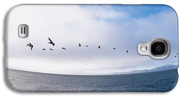 Alcatraz Photographs Galaxy S4 Cases - Pelicans Flying Over The Sea, Alcatraz Galaxy S4 Case by Panoramic Images