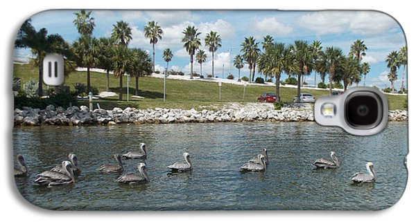 Waterscape Pyrography Galaxy S4 Cases - Pelicans Parade Galaxy S4 Case by To-Tam Gerwe