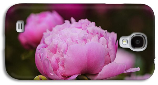 Pinks And Purple Petals Photographs Galaxy S4 Cases - Peony Garden 2 Galaxy S4 Case by Rachel Cohen