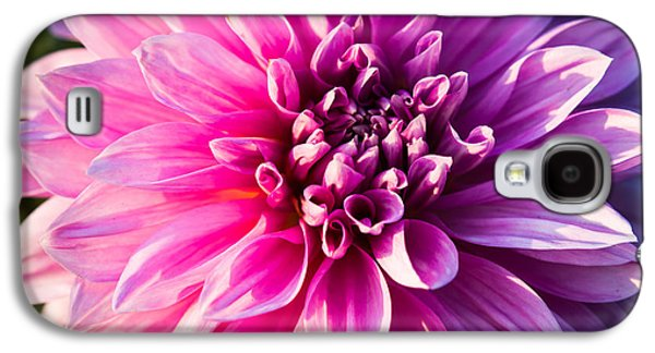 Indiana Flowers Galaxy S4 Cases - Peony In Bloom Galaxy S4 Case by Alexander Senin